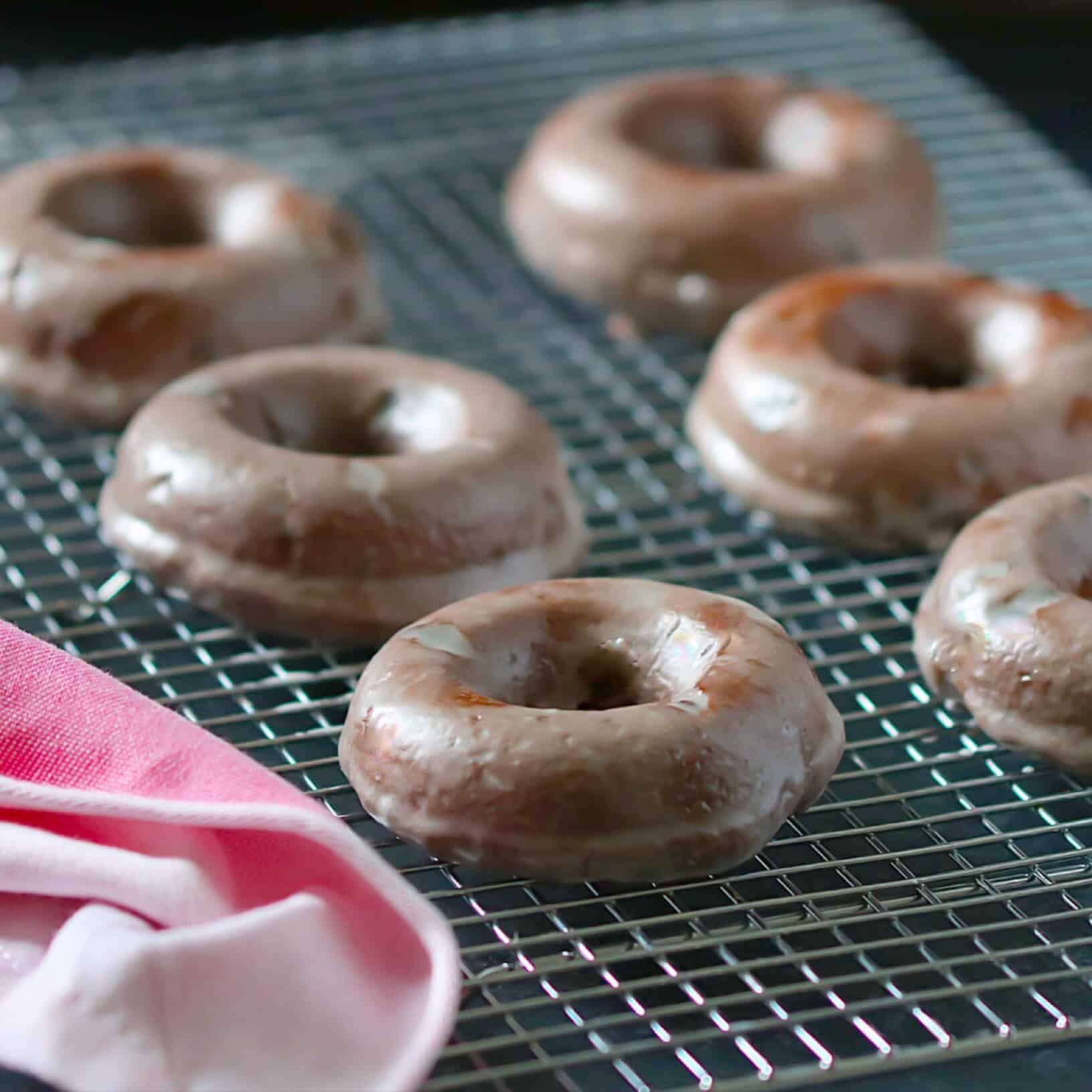 Double Chocolate Cake Donuts - Lila Ruth Grain Free