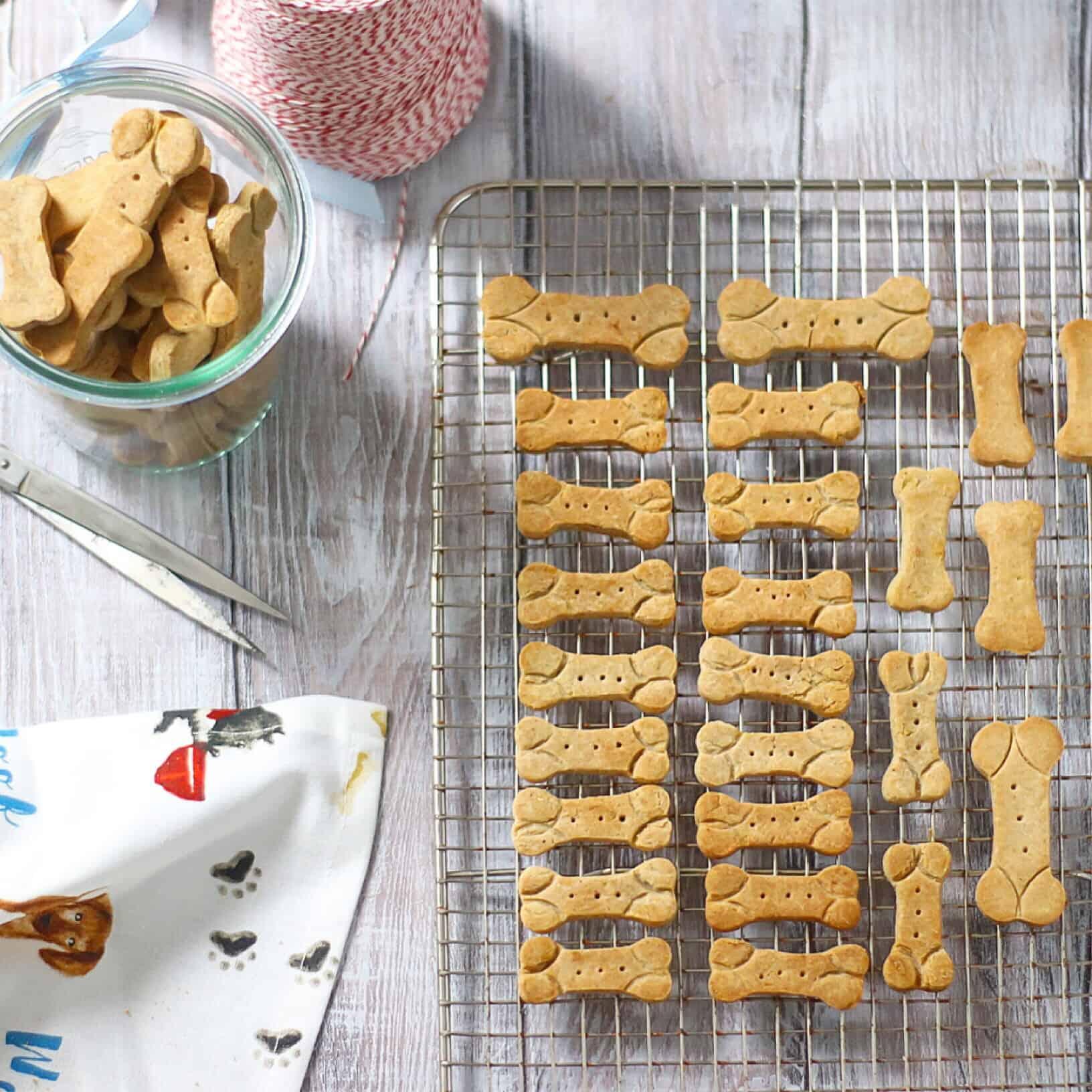 GF Dog Biscuits 1