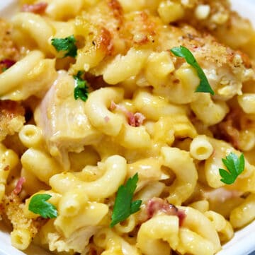 closeup photo of grain-free mac and cheese