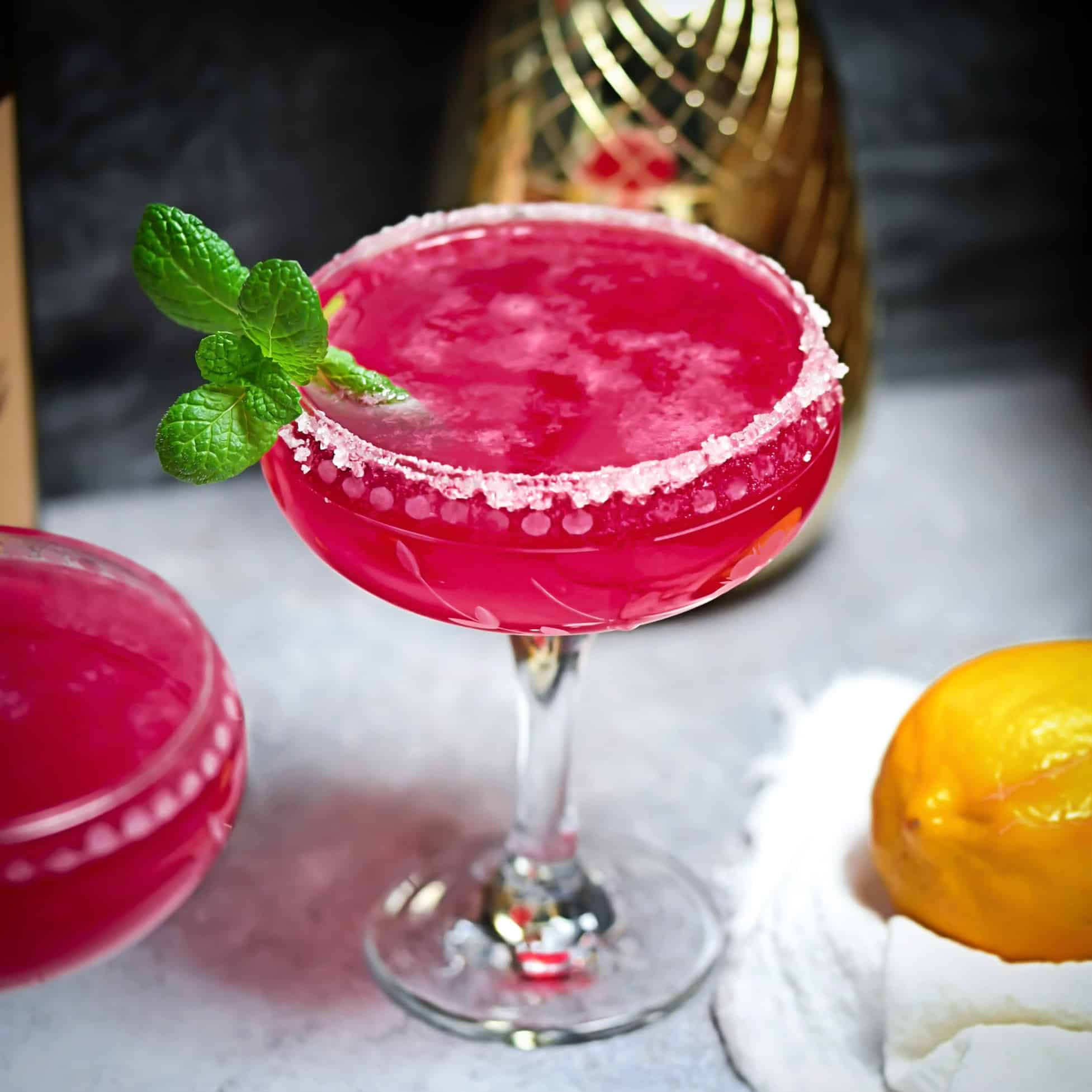 Cran-Citrus Fizz Cocktail + Mocktail