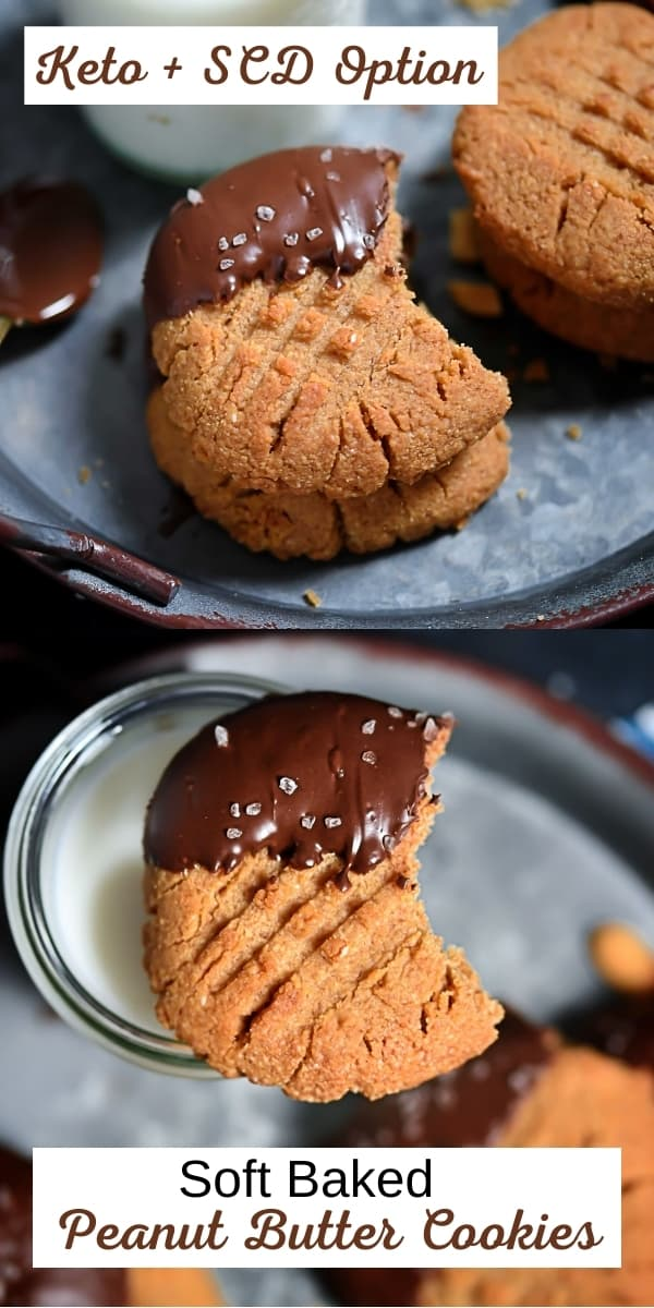 Sugar-Free Soft Baked Peanut Butter Cookies In Chocolate, Specific Carbohydrate Diet Option