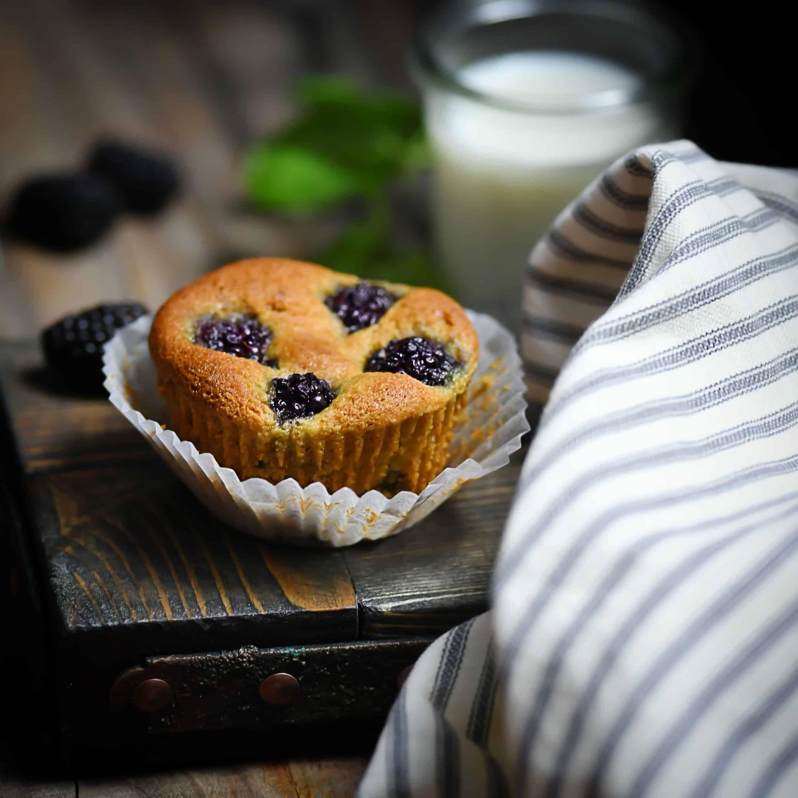 Fruity Breakfast Muffin