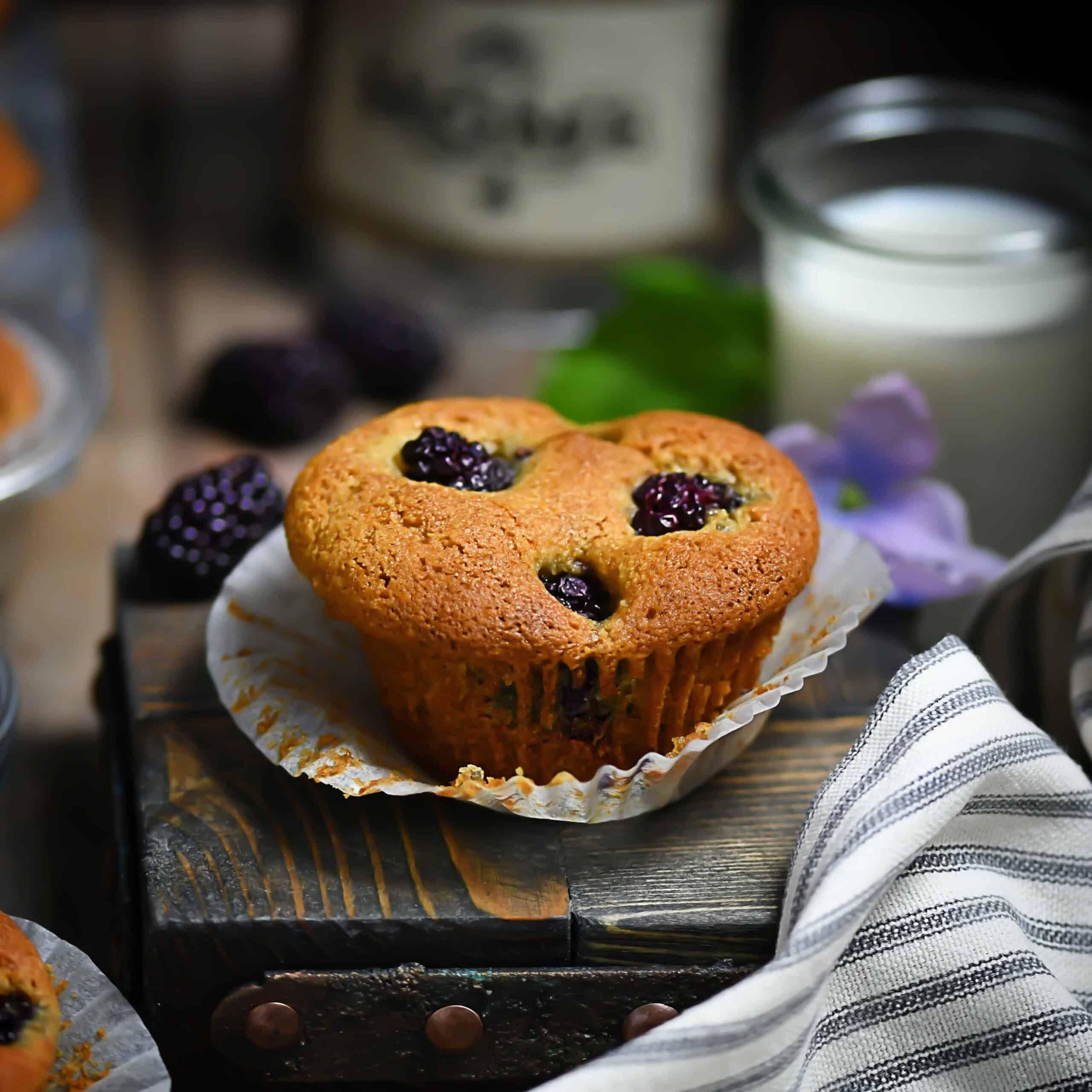 SCD + Paleo Blackberry Muffins